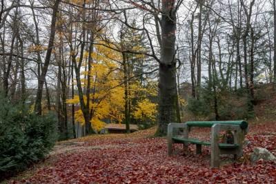 Parco di Bled, Slovenija