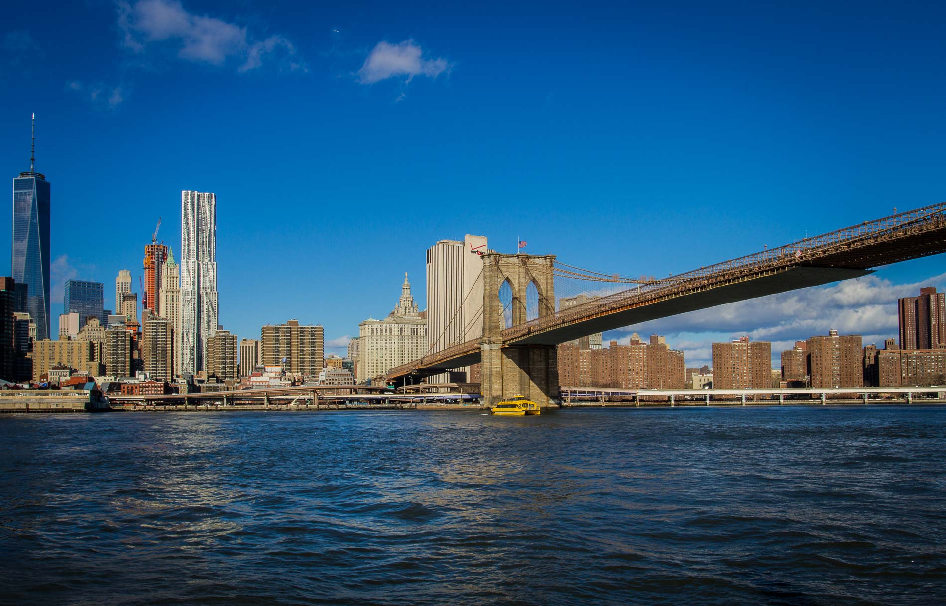 New York City Skyline & Brooklyn Bridge