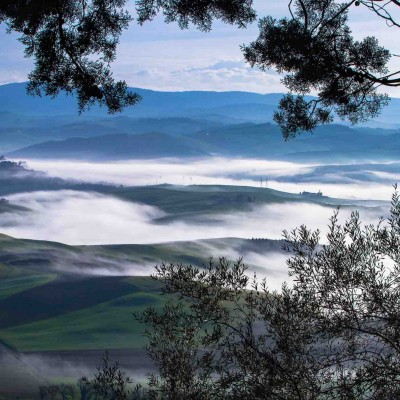 Veduta da Montalcino