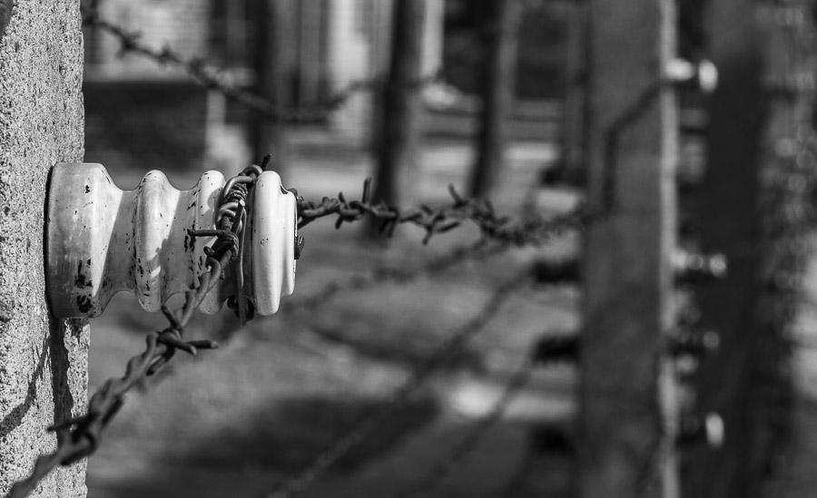 Auschwitz, filo spinato