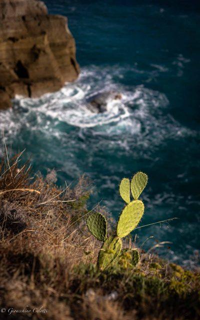 Sant'Angelo, scorcio di mare blu